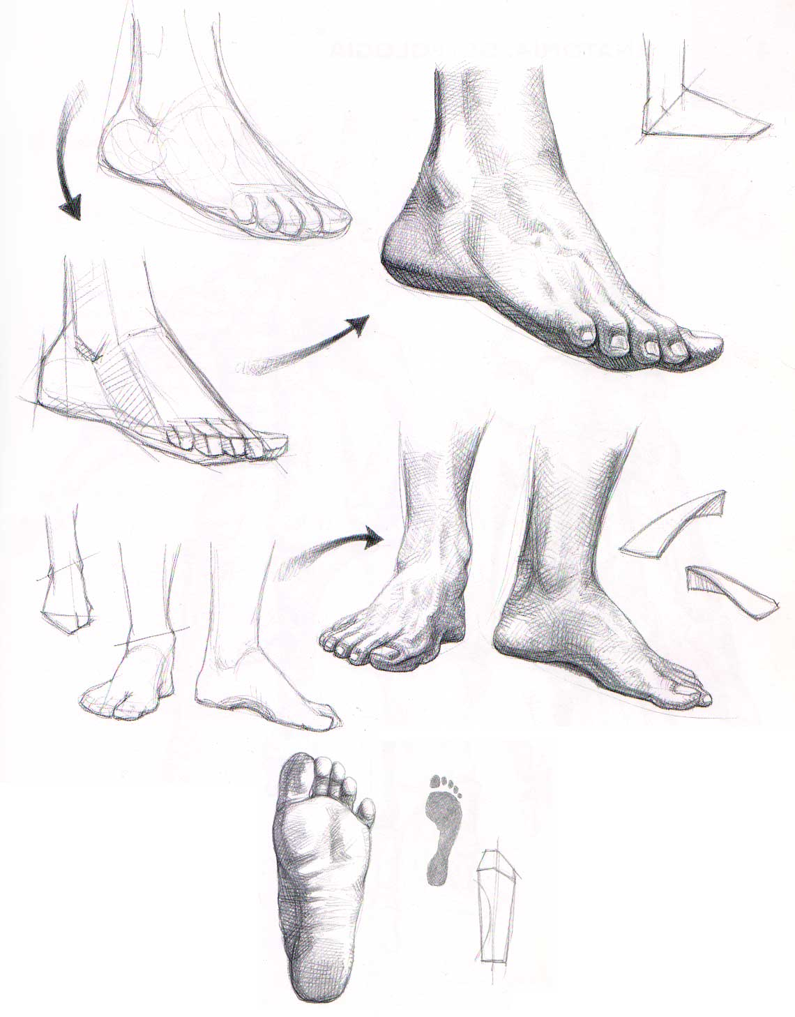 Aprender a dibujar manos y pies | El Dibujante 2.0